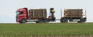 Gewichtslimit für Holztransporte verlängert