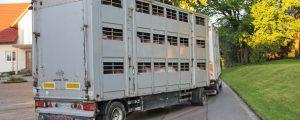 EU- Agrarminister für strengere Transportregeln