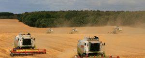 EU-Parlamentarier im Agrarausschuss noch uneins