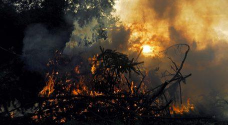 Buschbrände treffen auch die Farmer