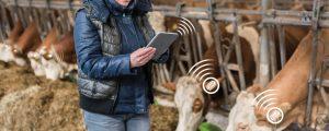 LFS Tamsweg nutzt digitale Gesundheitswächter