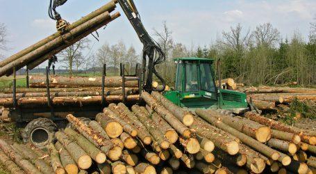 Schadholzbringung steht auf dem Spiel