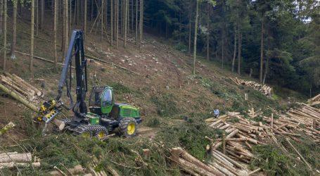 Nachfrage nach Sägerundholz nimmt zu