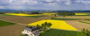 Absage Open Bauernhof 2020