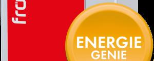 Fröling Pelletkessel ist ein EnergieGenie