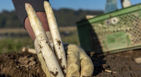 Arbeitskräfte für Lebensmittelwirtschaft finden