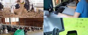 Innovation Farm praxisnah