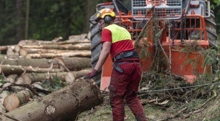 Holzpreis bleibt am Boden