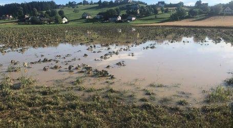 5.500 Hektar in Steiermark verwüstet