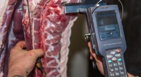Deutschland macht der Fleischindustrie neue Auflagen