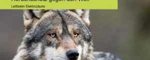 DLG-Merkblatt zum Herdenschutz