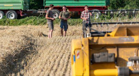 Burgenlands Getreideertrag unterdurchschnittlich