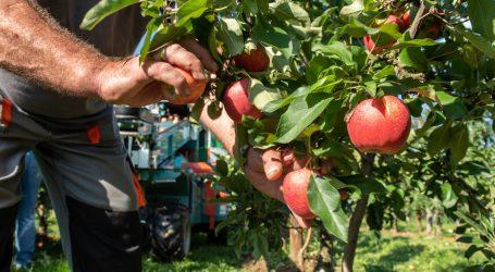 Ländle Obstbörse tritt wieder in Aktion