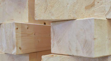 Der richtige Holzweg