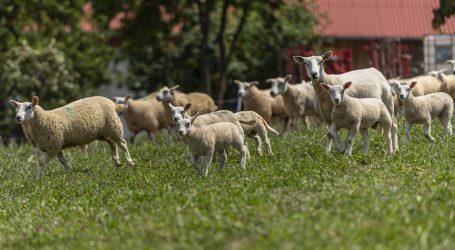 After Work bringt Städter und Bauern zusammen