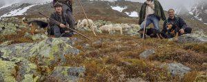 WWF fordert mehr Herdenschutz