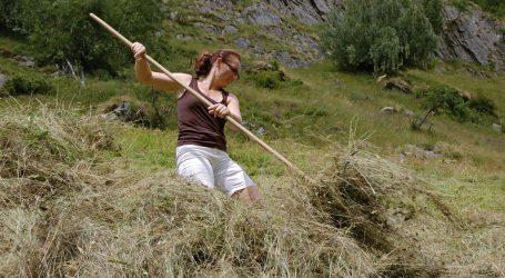Bergbauernvereinigung fordert verdoppelte Förderung