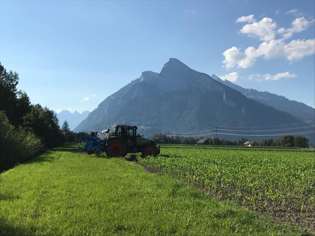 Florianerin berichtet vom Praktikum in der Schweiz
