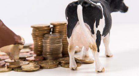 Anhaltend positive Signale vom internationalen Milchmarkt