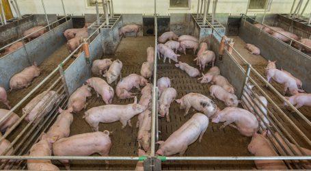 Bio Austria befremdet über Stellungnahmen zur GAP