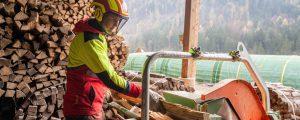 Fünf heiße Fragen für den Brennholzkäufer