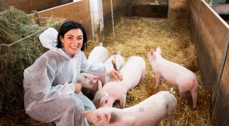 Innovation Farm bereitet dem Tierwohl den Weg