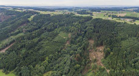 Plattform für den klimafitten Wald online