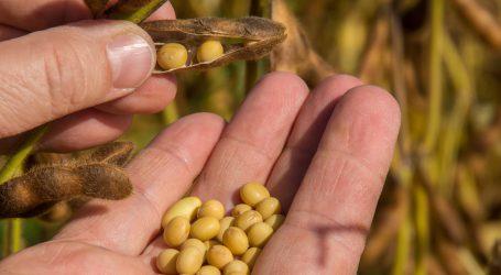 Moldawien fit für Bio-Sojaexport