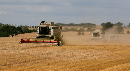 Land&Forstbetriebe fordern Unterstützung