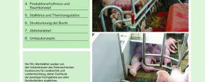Neuauflage ÖKL über Zuchtsauen – Abferkelbuchten