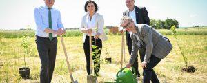 Klimaforschungswald wächst in Matzen-Raggendorf