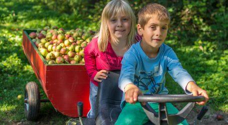 Green Care betreut Kinder vor Ort