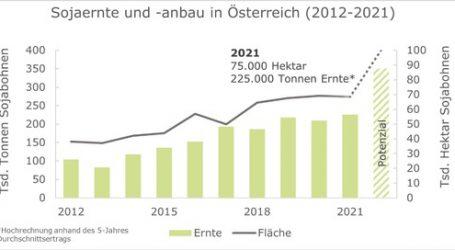 Donau-Soja prognostiziert eine Rekordernte