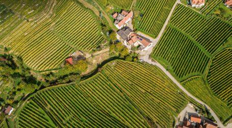 Österreichischer Weinatlas digital verfügbar