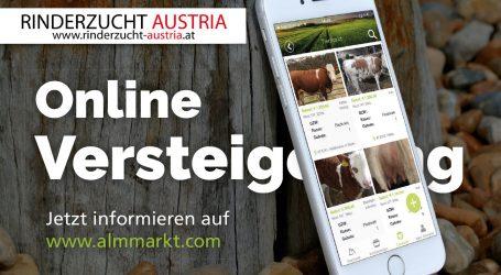 Digital in ganz Österreich versteigern