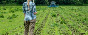 EU-Agrarminister zurückhaltend beim Bio-Aktionsplan