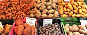 Saisonkalender für Gemüse und Obst online verfügbar