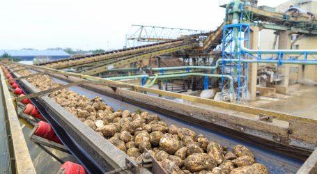 Zuckerrübenernte 2021 startet Anfang Oktober